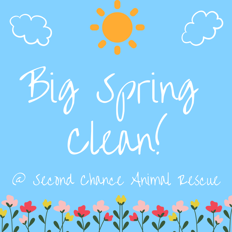 Big Spring Clean! Volunteer Day | Second Chance Animal Rescue